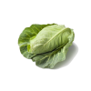 Cabbage Pointed, 1pc