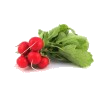 Radish, 1 Bunch, IRISH