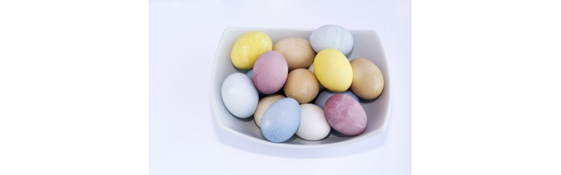 The Nutritional Power of Eggs