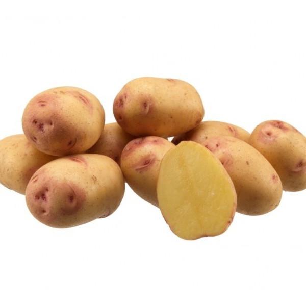 Organic Floury Potatoes