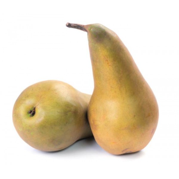 Organic Pears Conference