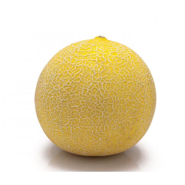 Melon Galia, 1pc Fruit