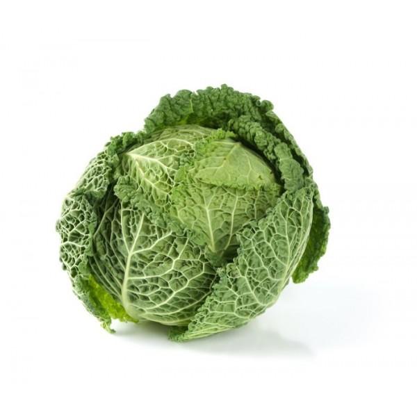 Organic Cabbage Savoy