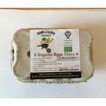 6 Large Organic Eggs IRISH